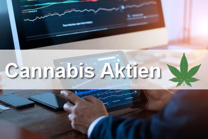 Cannabis Aktien 2021 – der neue Stern an internationalen Börsen?